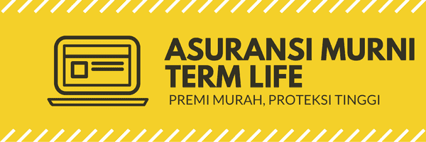asuransi term life