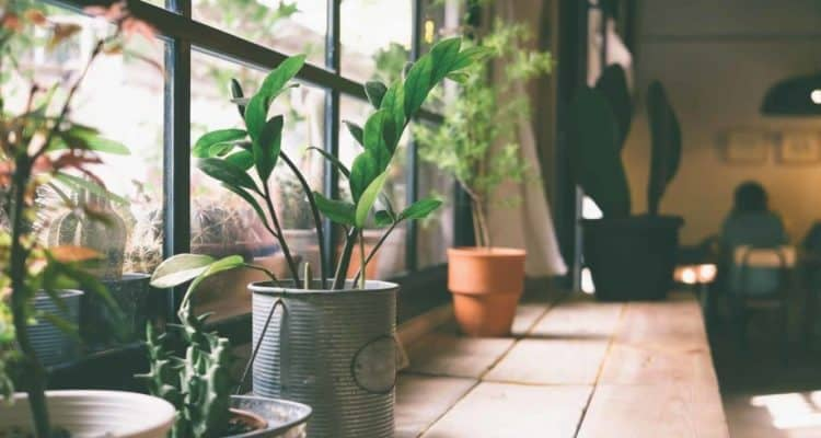 Tips Lolos KPR Rumah