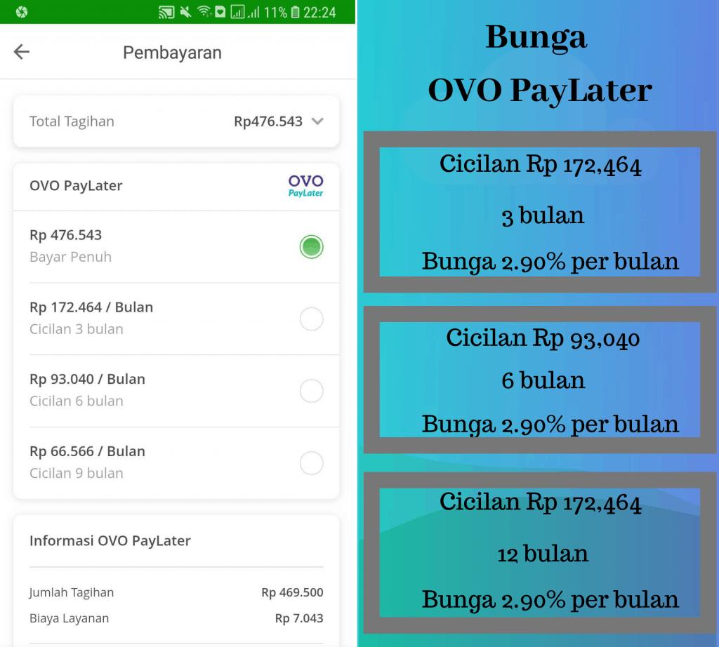 Bunga OVO PayLater