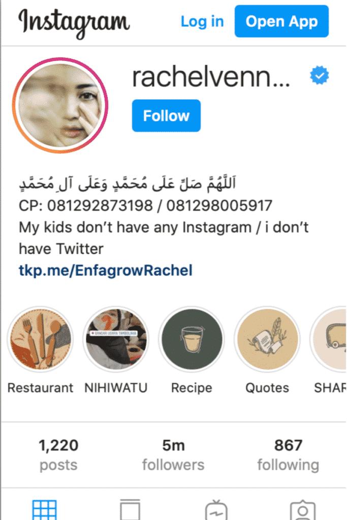 Instagram Influencer - Mencari Uang di Internet